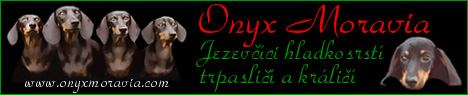 Banner Onyx Moravia